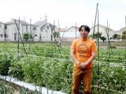 調布・染地で春野菜の収穫体験 多品種栽培目指す農家が恒例企画、家族連れに人気