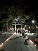 府中・大國魂神社で幻想的な「キャンドルナイト」  ミニライブや特産品販売も
