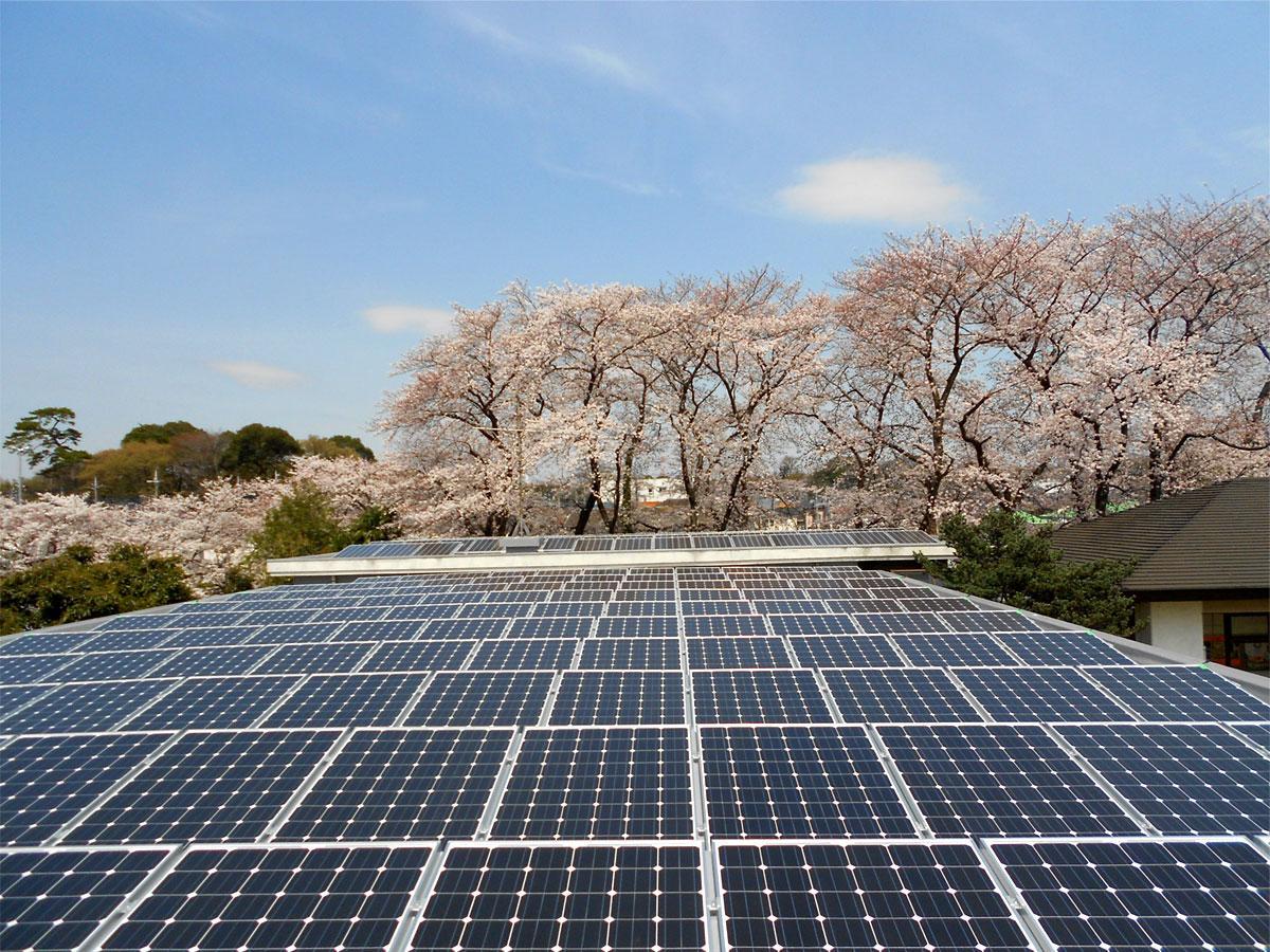 調布ヶ丘地域福祉センターの太陽光発電パネル。府中・調布まちなかエナジーは電力の地産地消を目指す