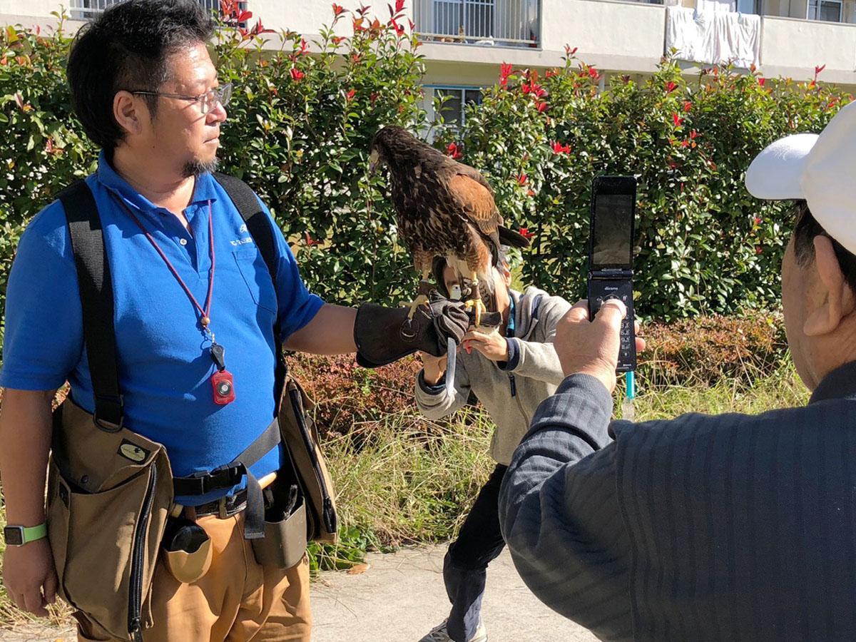 住民らに携帯やスマートフォンのカメラを向けられ人気を集める鷹匠の安井寛さんとタカ