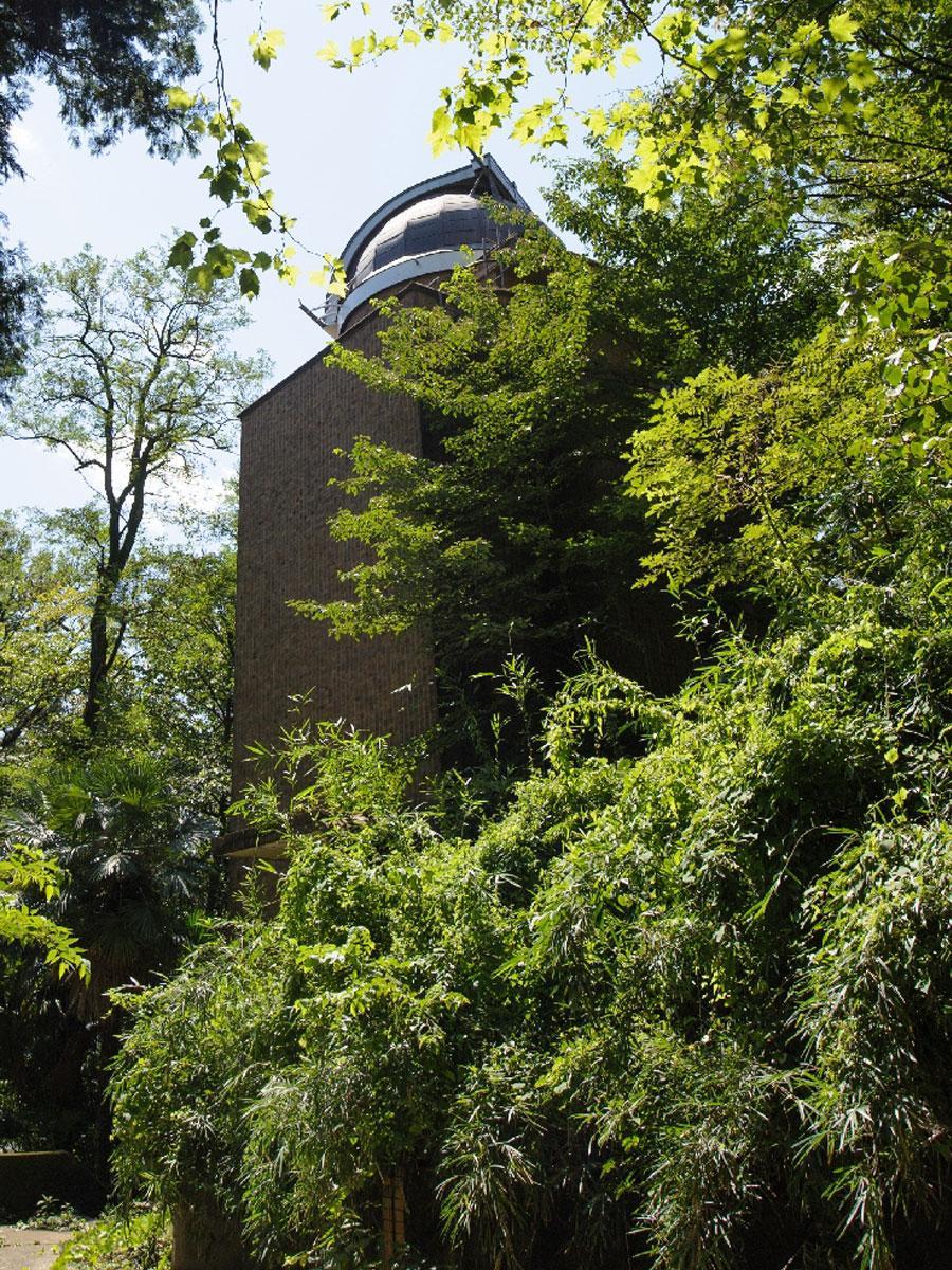 「アインシュタイン塔」と呼ばれる太陽塔望遠鏡。上部のドーム部から太陽光を取り込み、特殊な鏡で反射させ半地下(右下に茂る植物の向こう側)にある暗室へ導き、スペクトル観測する ©国立天文台
