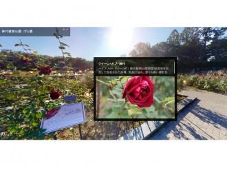 調布の神代植物公園が「オンラインばら園」で植物紹介