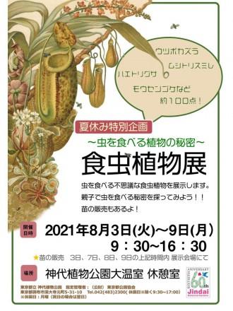 調布・神代植物公園で夏休み企画「虫を食べる植物」 苗の販売も