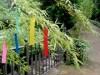 調布の欧風庭園アンジェで七夕イベント-風鈴の絵付け体験も