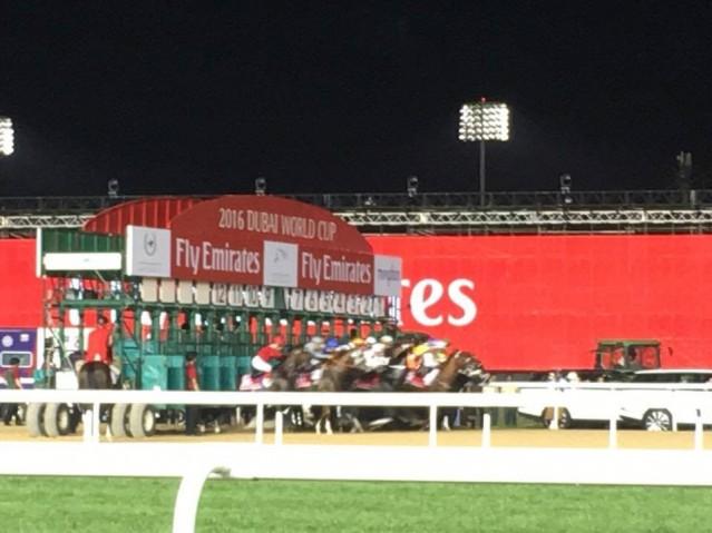 日本馬も参戦のドバイワールドカップ、開幕まで2週間