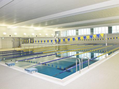 豊洲西小学校のプール