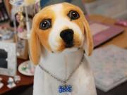 金属アレルギー犬装着可のドッグタグ 福井・越前市の企業、純チタン使い