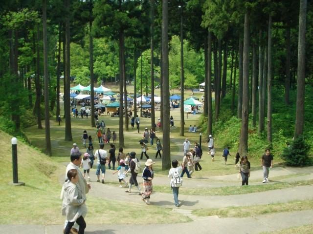ワークショップのロケ地となる同館周辺の森