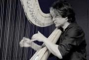 福井・敦賀で「医食音源」テーマにディナーライブ 東大医学部卒のハープ奏者迎える