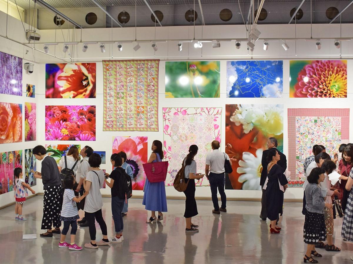 鮮やかな色彩を放つ作品が並ぶ会場