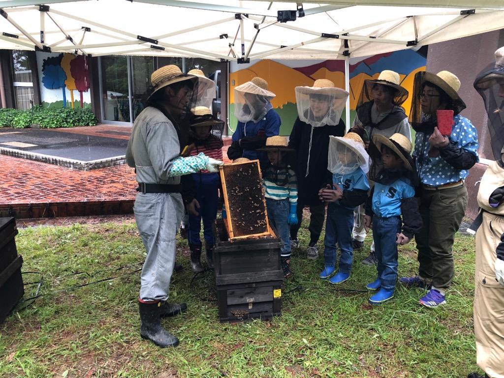 巣箱から巣枠を取り出す作業を体験する参加者