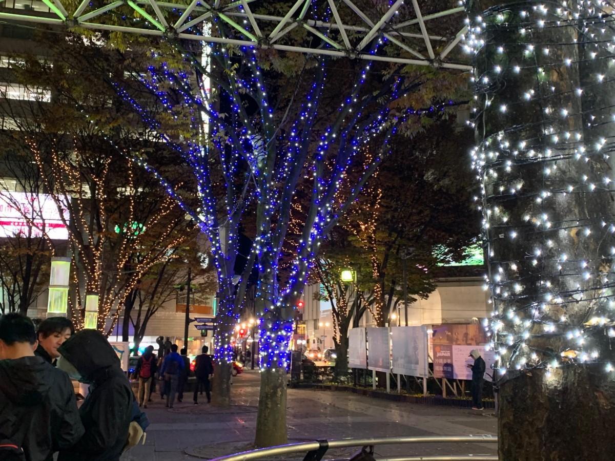 福島駅前東口広場の植木に彩られたイルミネーション