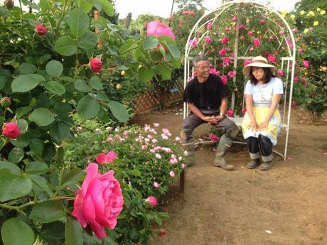 夫婦で作ったバラのラブチェアに座る丸山夫婦