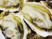船橋市内10飲食店で復興支援「石巻牡蠣の会」 カキ1000人前振る舞い