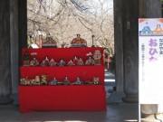 下総中山駅周辺で「中山のおひなまつり」 商店街などがひな人形一色に