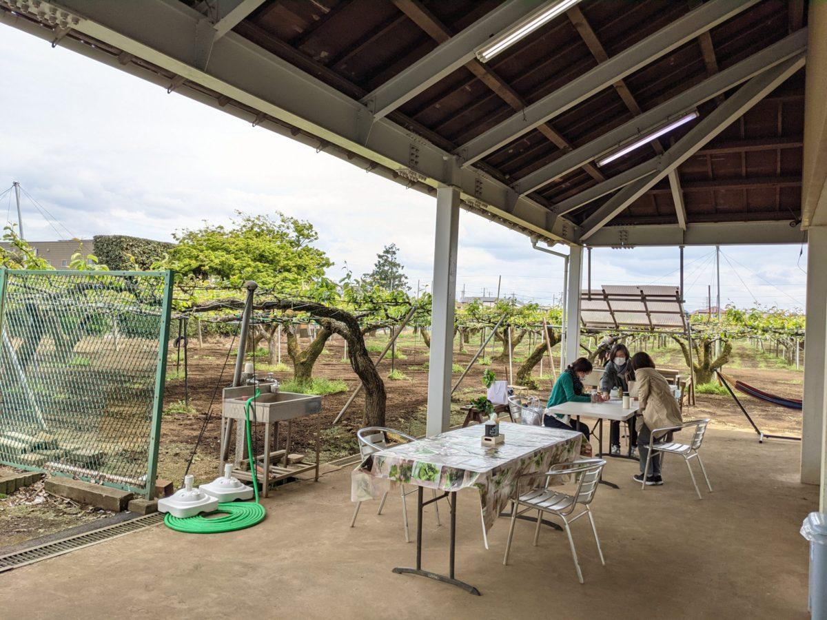 梨畑を見ながら過ごせるカフェスペース