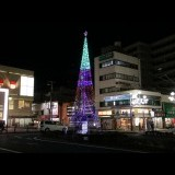 中山商店会に緑のクリスマスイルミネーション ツリー頭頂部分を鮮やかに演出