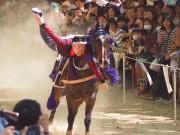伏見・藤森神社の駈馬神事に2万人 馬上で手綱潜りなど7つの技を披露