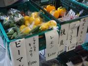伏見で「エコ朝市」 伏見の野菜を地産地消するきっかけに