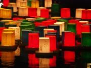 伏見の夏の風物詩「万灯流し 」 色とりどりの灯籠が水面を幻想的な世界に