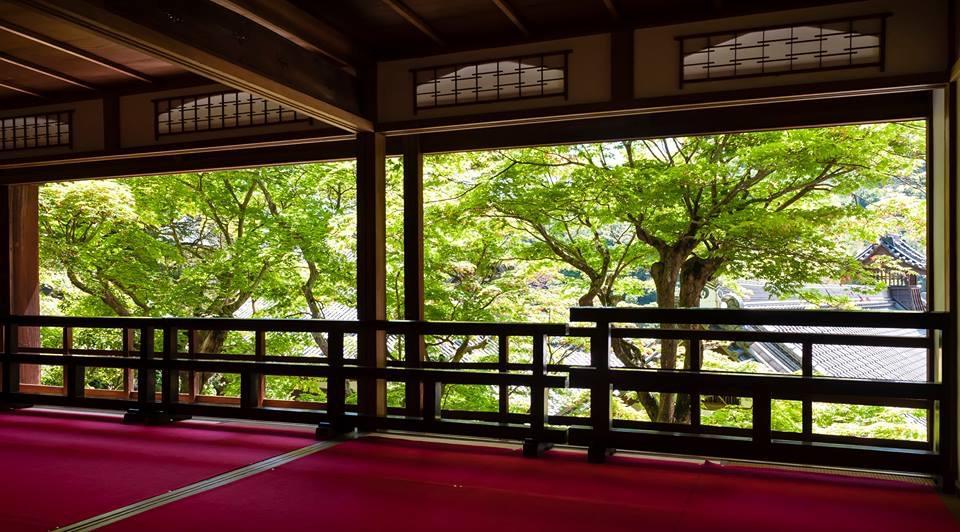 特別公開される柳谷観音・楊谷寺の上書院。映画「日本のいちばん長い日」の撮影も行われた