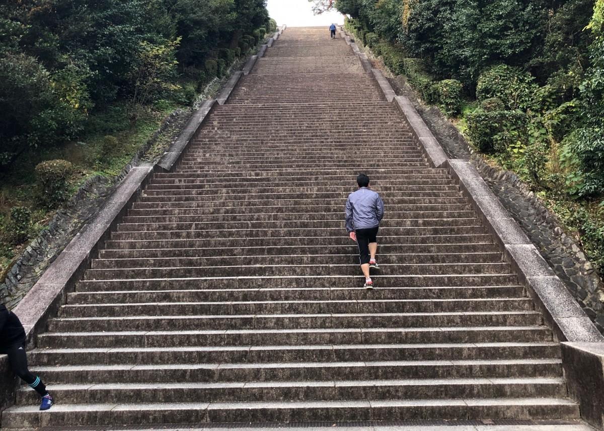 「山の伏見」コースの明治天皇陵(伏見城跡)の230段の大階段