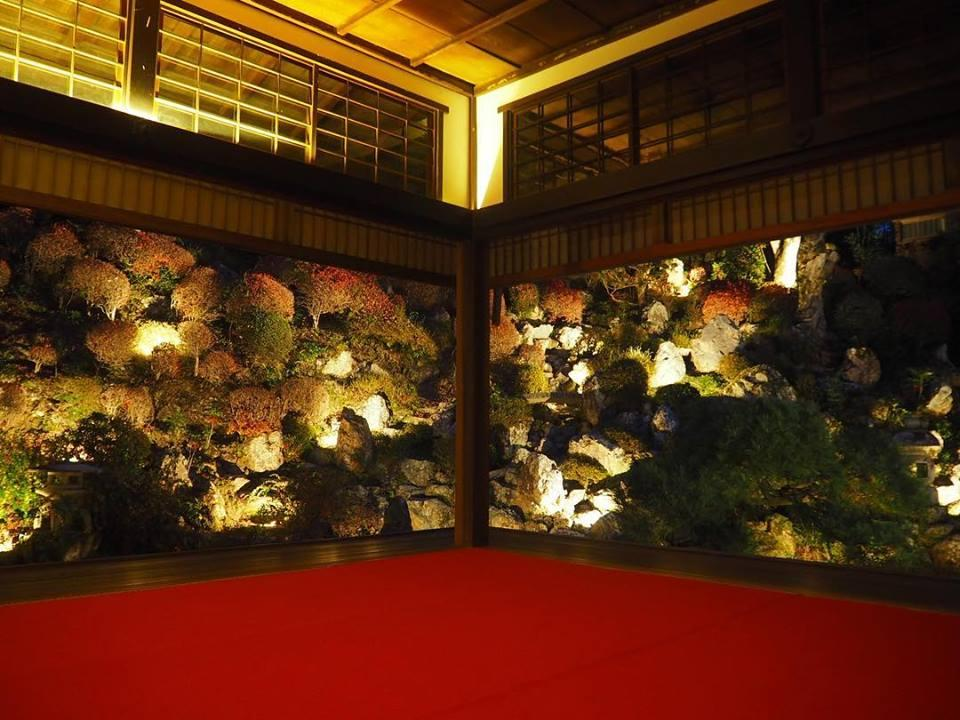 柳谷観音の書院から見た庭園ライトアップ