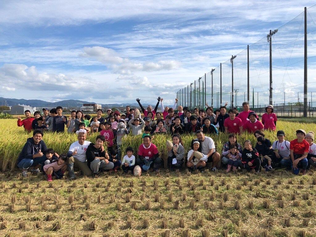 伏見向島「たんぼラグビー」の稲刈りを楽しんだメンバー