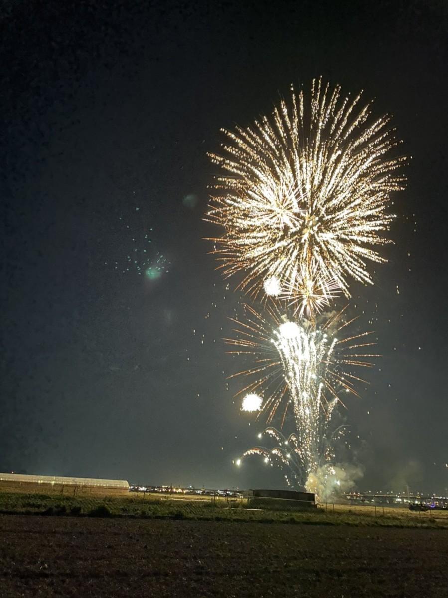 伏見向島で打ち上げられた花火