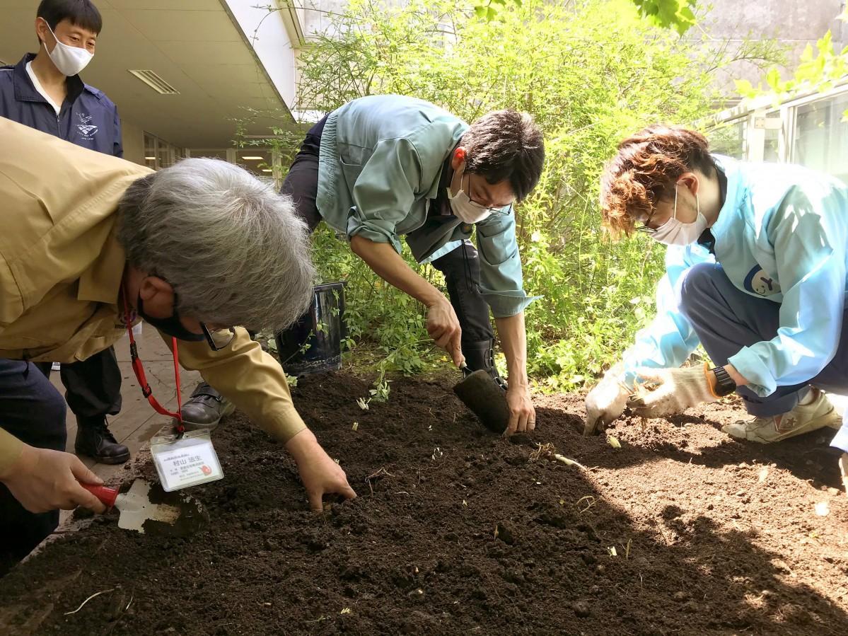 ユリの球根を植え付けする京都生花の村山さんと伏見青少年活動センターと伏見区役所の職員