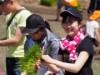 伏見・向島で京都の酒米「祝」の田植えイベント 学生や家族連れも笑顔で参加