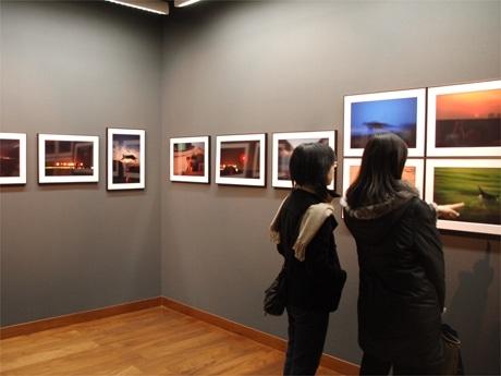 神奈川県三浦市から千葉県南房総までの湾岸地域の猫を捉えた写真展。写真の配置にもこだわり50点の作品が展示されている。