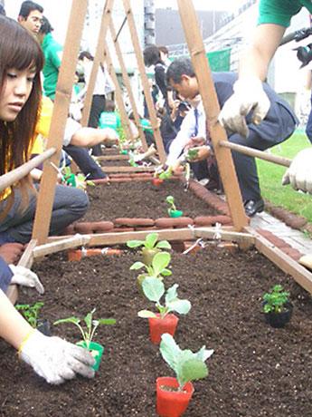 松屋銀座屋上菜園で同店勤務のボランティアスタッフたちにより秋野菜の種・苗が植えられた