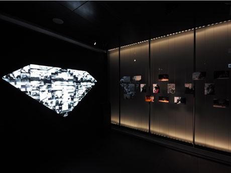 ボツワナの風景、動物、原石を選別する人々などをダイヤ型モザイクアートで表現した作品も