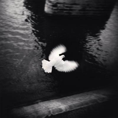 White Bird Flying, Paris, France, 2007 ©Michael Kenna/RAM