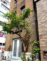 銀座・築80年の洋館建築、保存改修作業大詰めに-ギャラリーに再生