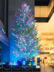 銀座・ミキモトで最後のジャンボクリスマスツリー点灯式