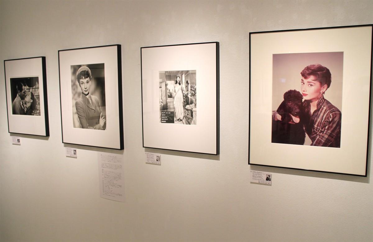 写真展「伝説の映画スターたち、オードリーなど」の展示風景