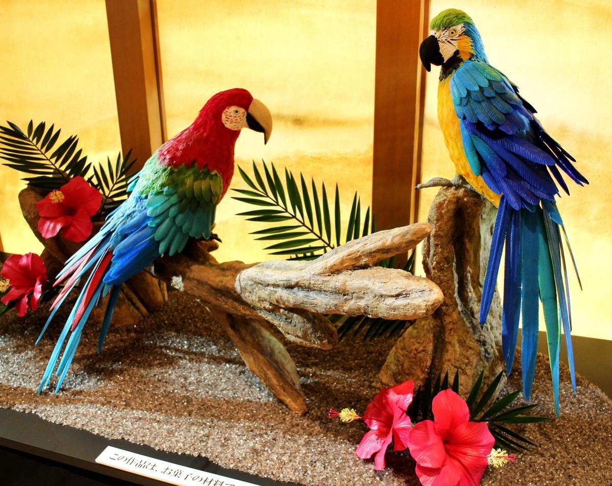 「お菓子でつくる彩色の美 世界の花と鳥展」の展示風景