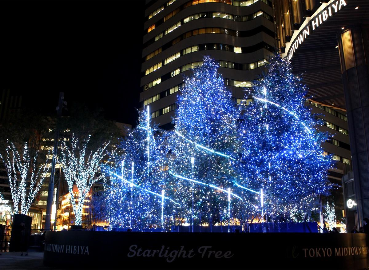 「Starlight Tree」