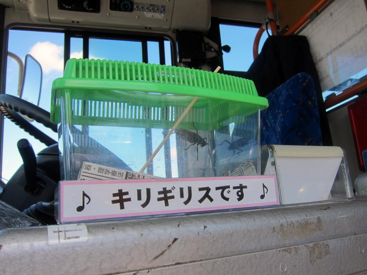 南部バスでキリギリスバス運行