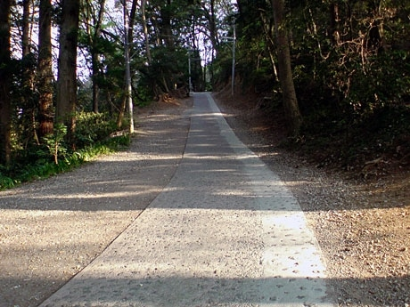 高尾山の中ではもっとも登りやすい「1号路」