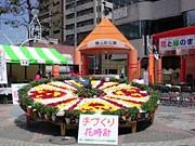 八王子駅前で「花と緑のまちづくりフェア」-手作りリースのコンテストも