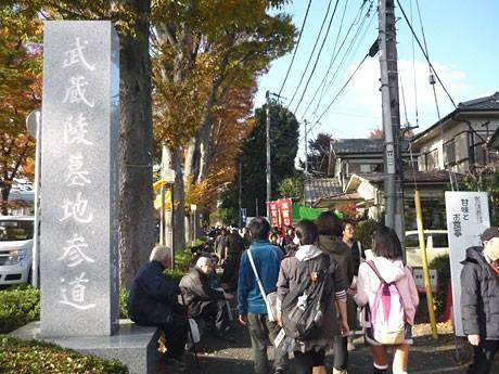 「いちょう祭り」の舞台の1つである武蔵陵墓地の参道には毎年多くの人が集まる