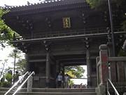 京王電鉄が「樹の里アドベンチャー」-高尾山舞台にオリエンテーリング