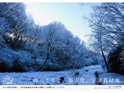 八王子みなみ野駅に地域の自然を紹介する駅貼りポスター、開始から1年