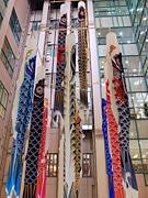 八王子東急スクエアに88匹のこいのぼり-多摩最大規模、8メートルのものも