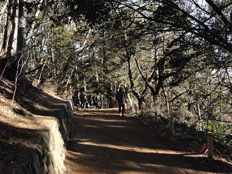 開催日は12月23日で、冬の日差しの中、山中を走り抜ける