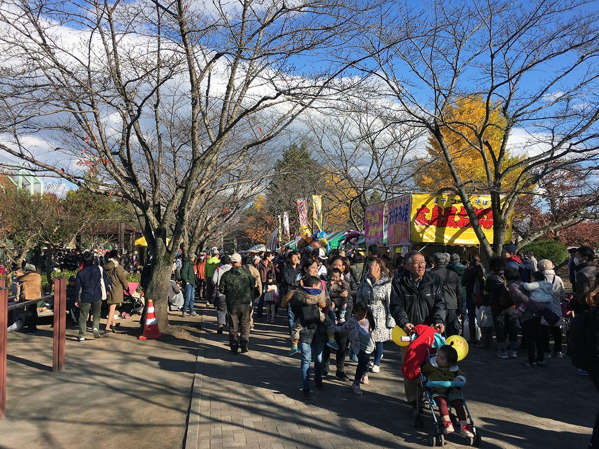 「八王子いちょう祭り」の際には多くの人でにぎわう陵南公園