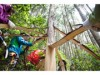 「八王子100年森と踊るフェス」開催へ 高尾の森で木の皮むき体験